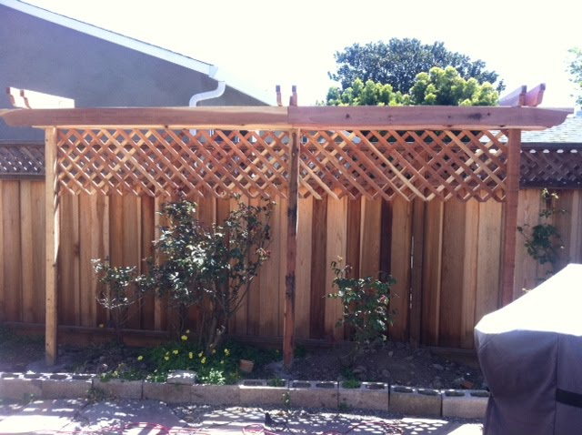block view of our neighbors and plant climbing vines making the most of outdoors pinterest. Black Bedroom Furniture Sets. Home Design Ideas