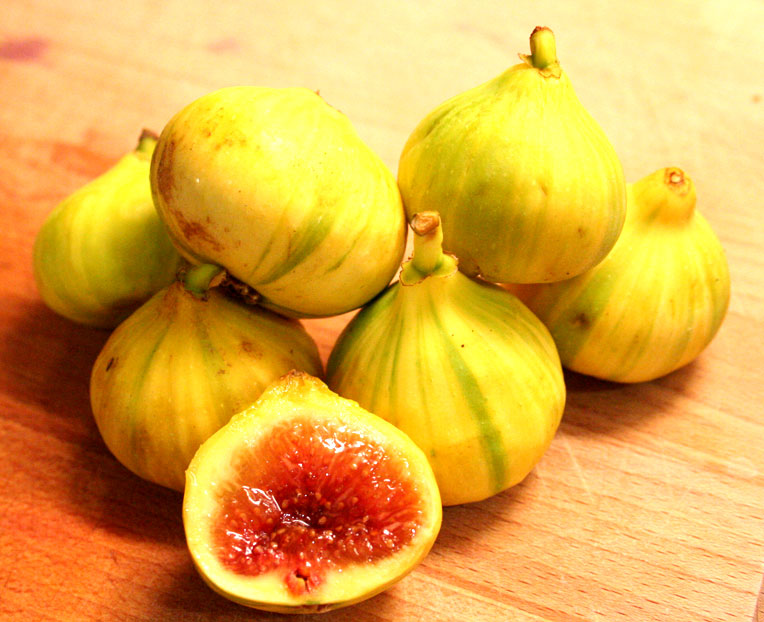 The Internet Lied To Me About Microwave Dried Figs