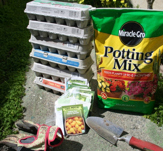 potting mix and egg cartons