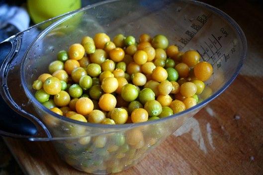 3gooseberry
